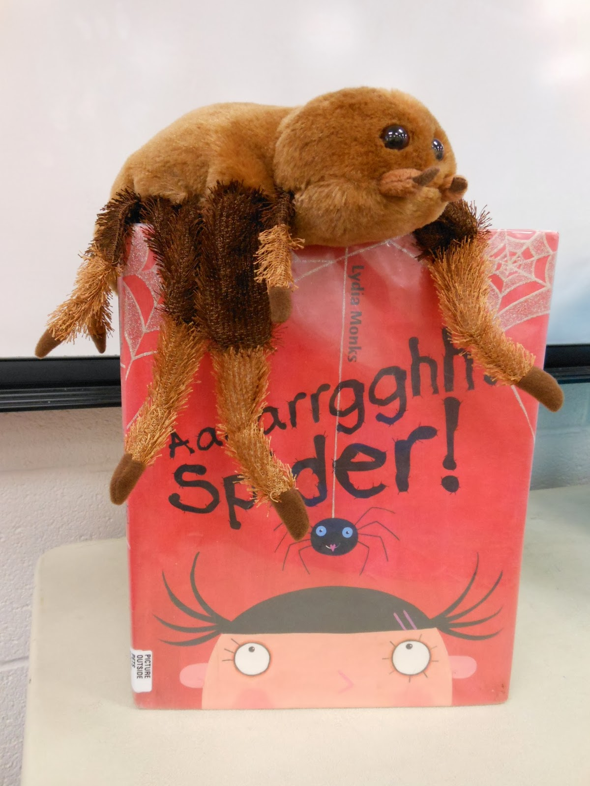 storytime with miss tara and friends spiders pre k and family