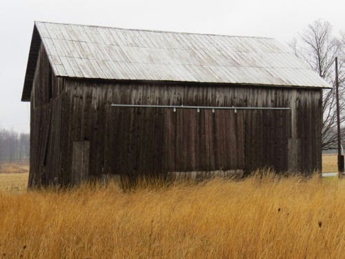 old barn in grass