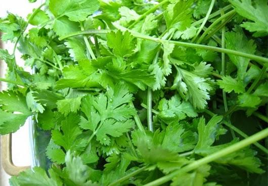 Các loại rau thơm dễ gây yếu sinh lý
