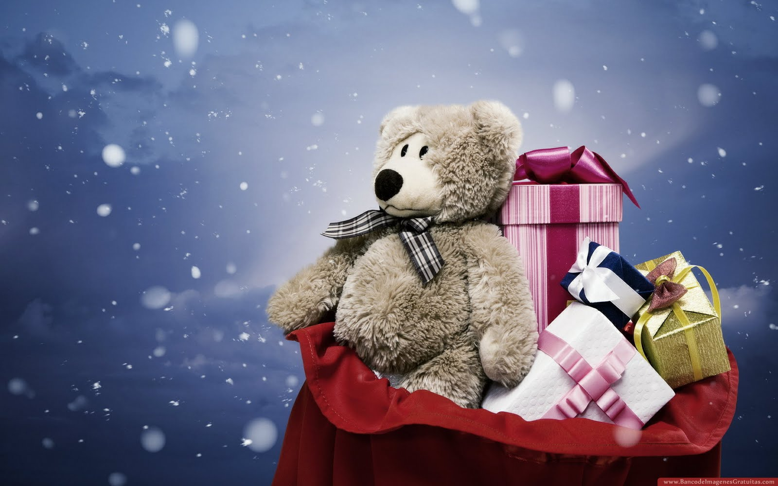 Oso de peluche con muchos regalos (wallpaper)