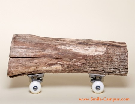 Funny Skateboard Designs