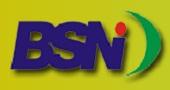 Lowongan kerja CPNS BSN