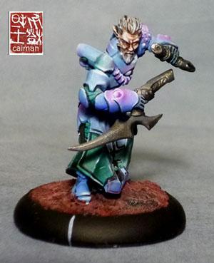 [Vente] Armée scyrah et hauts elfes P1070099