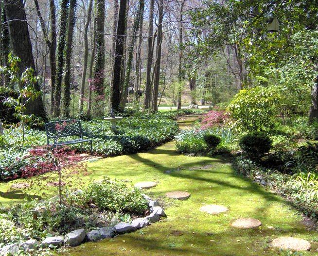 Moss Gardening   When Grass Is NOT An Option