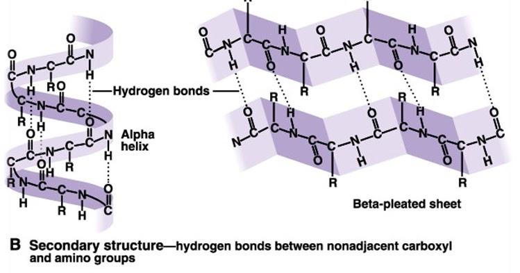 Lazda Chemistry Pembahasan Kimia Soal Simak Ui 2010 Kode 504