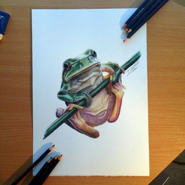 hyperrealistic color pencil drawings