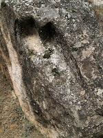 Detall de tomba antropomorfa en una roca caiguda de la necròpolis de Cal Pallot