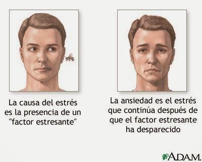 sintomas ansiedad fisicos