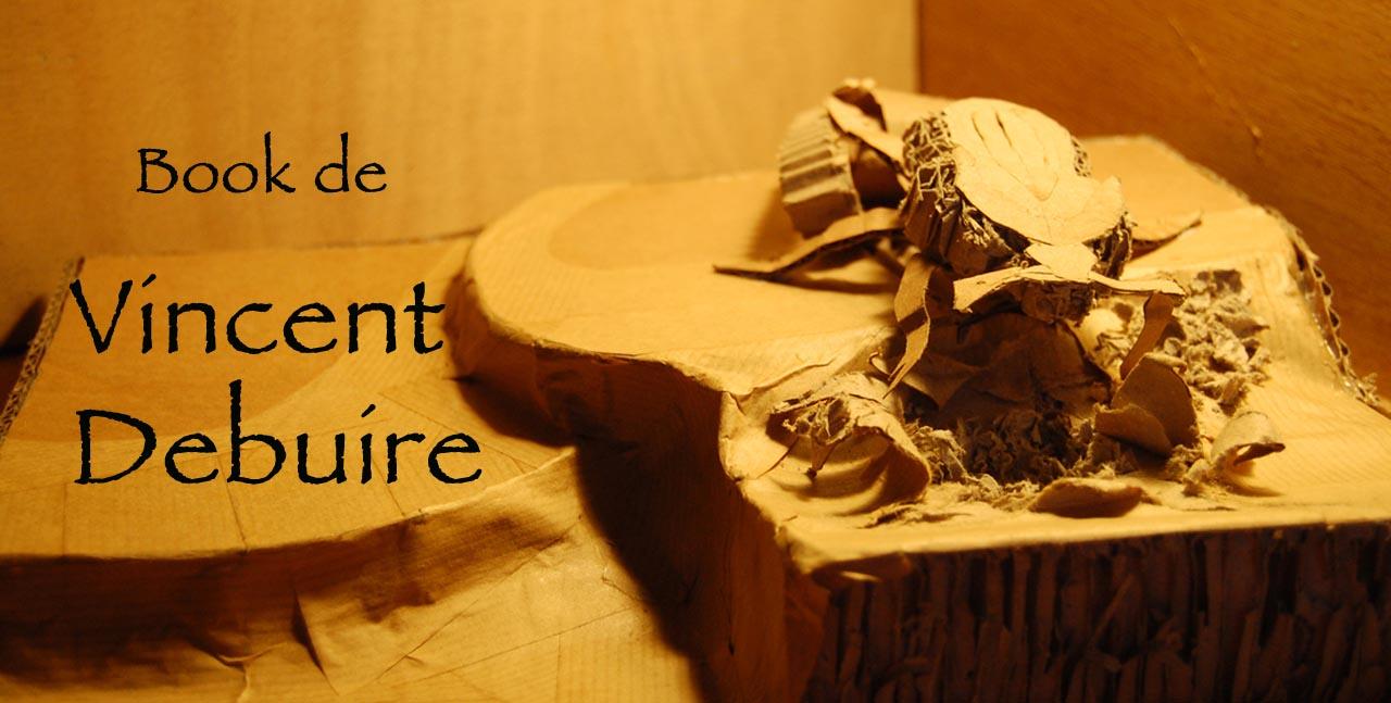 Book de Vincent Debuire