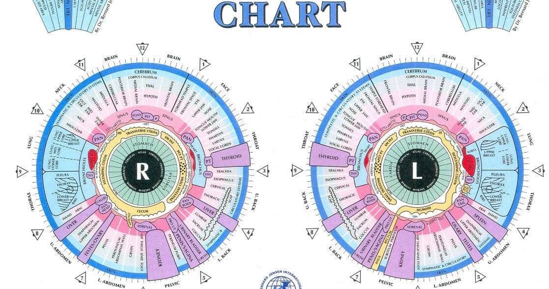 Healing Ways Iridology Charts