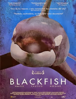 Ver Blackfish Online Gratis Pelicula Completa