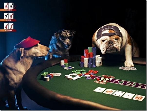 Gambling funny stories