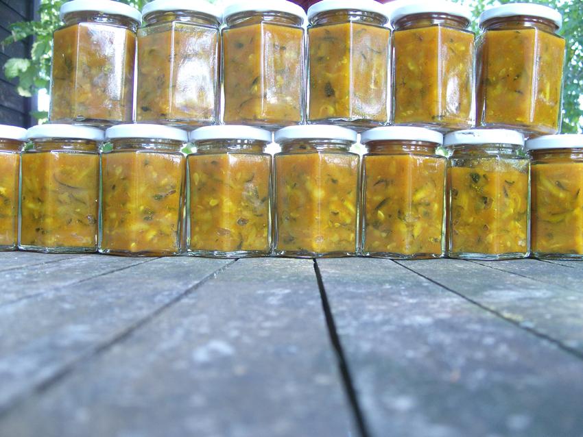 Küchenschabe Deutschland ~ die küchenschabe zucchinischwemme