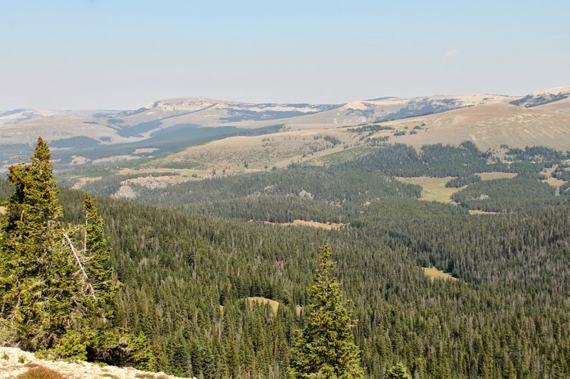 Five Springs Basin, Bighorn Mountains, WY