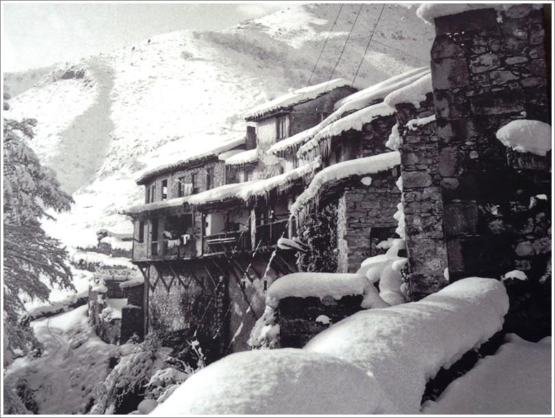 Kar ve Yaşam