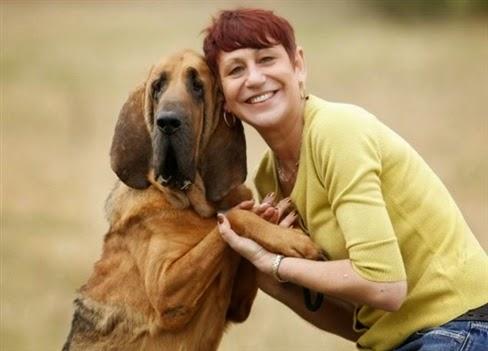 Phẫu thuật nâng cơ mặt, căng da, giảm vòng eo cho chó