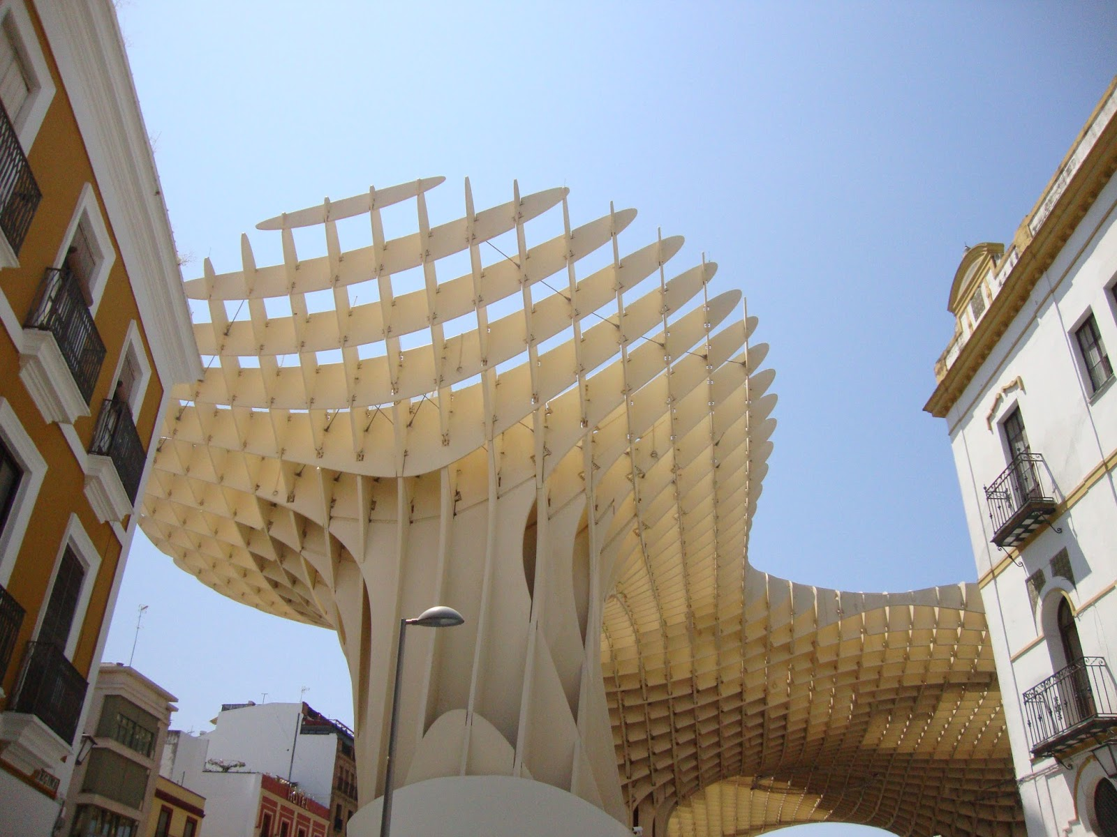 Alice 39 S Adventures In Spain Giant Mushrooms