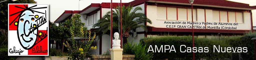AMPA Casas Nuevas