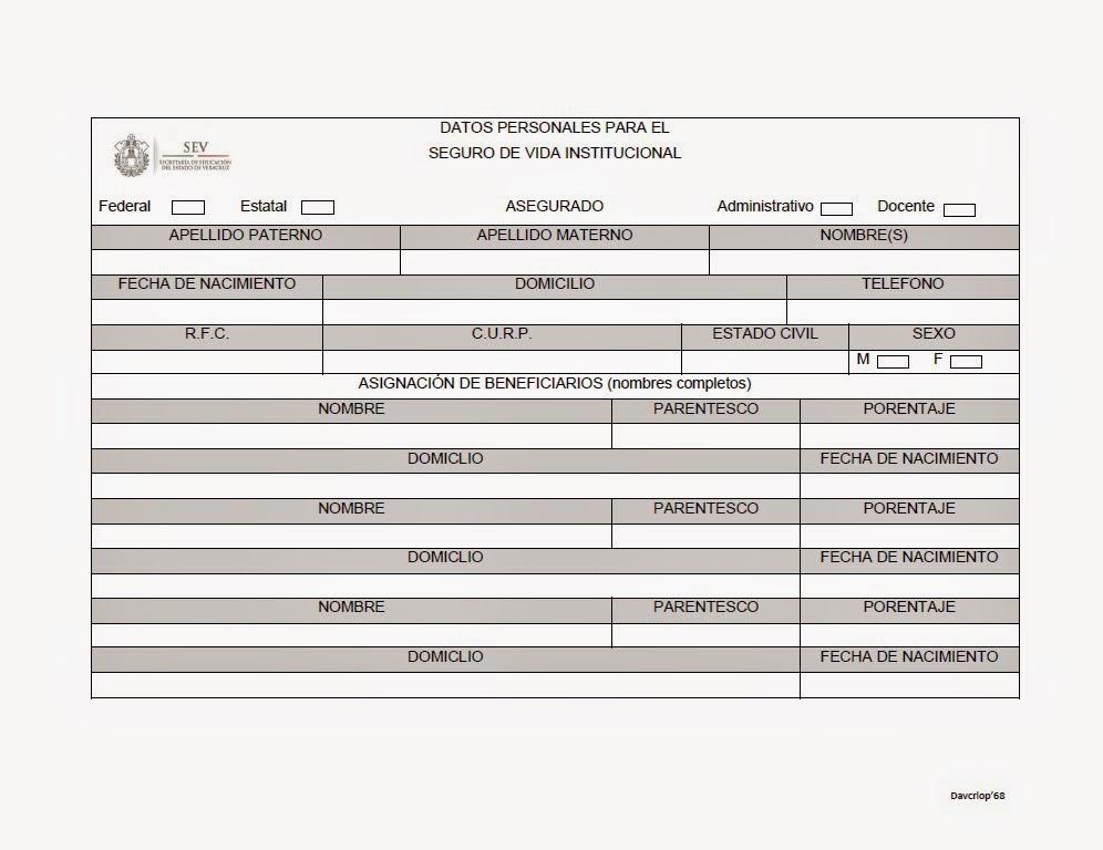 FORMATO PARA SEGURO INSTITUCIONAL