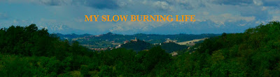 My Slow Burning Life