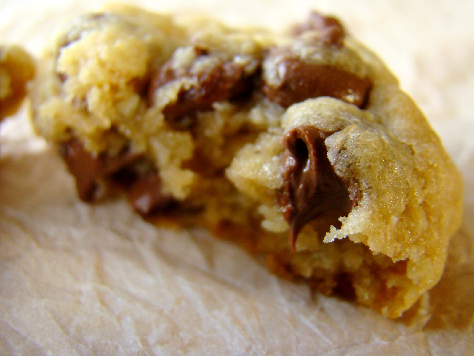 Family Feedbag: Best ever chocolate chip cookies (gift-giving mix!)