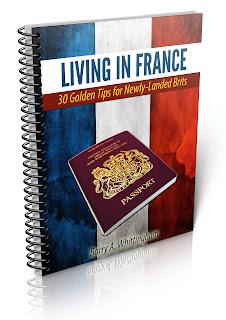 http://frenglishthoughts.com/freeoffer/free-living-in-france-guide/feed/