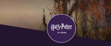 És fã do Harry Potter? Aqui, podes fazer muitas descobertas