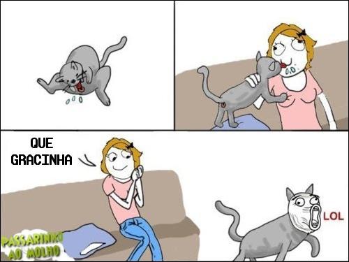 memes, tirinhas gato