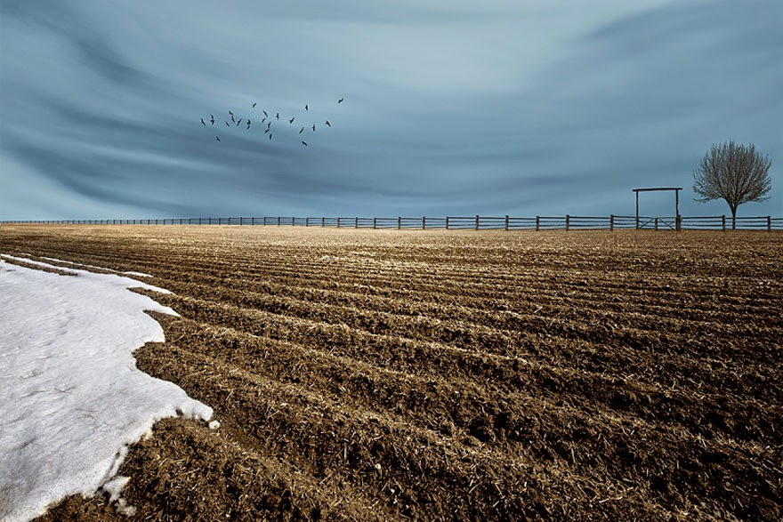 Сельские пейзажи от Лизы Вуд (10 фото)