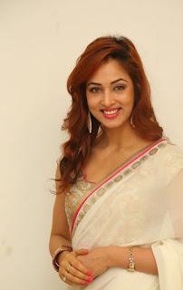 Actress Vidisha Srivastava Latest Pictures in Saree at Harinath Wedding Reception  3.jpg