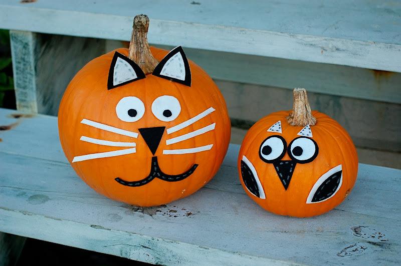 Color canopy no carve pumpkin decorations - Decoracion calabazas para halloween ...