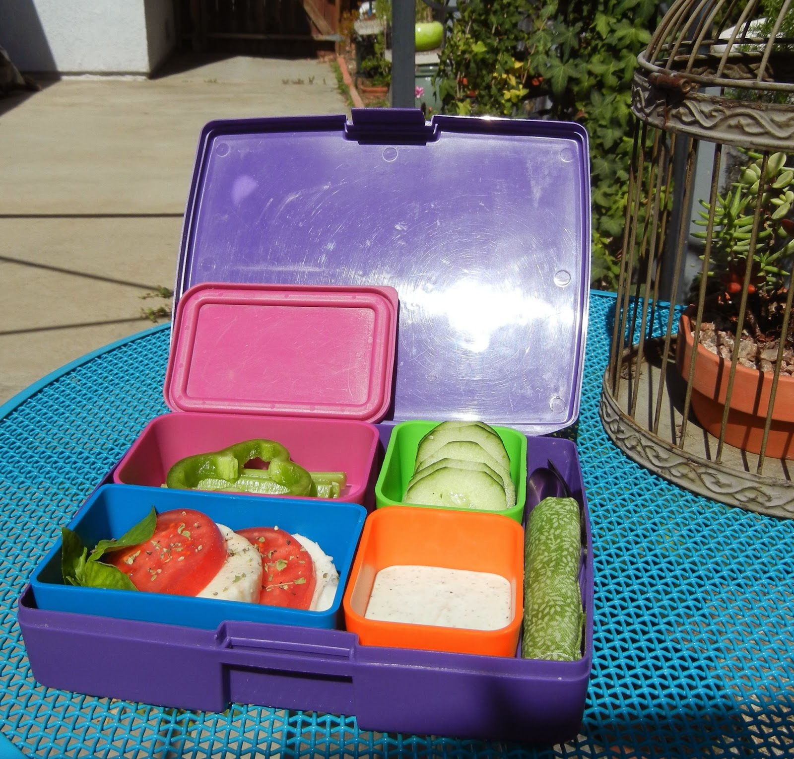 Picnic+Bento Weight Loss Recipes Blue Sky and Bento Lunch