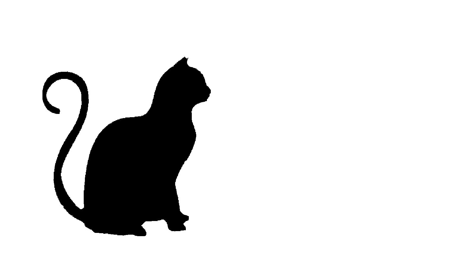 Mascara gato silhueta TR_1920x1080