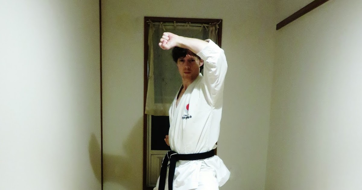 Andr 233 bertel s karate do overview of 2015