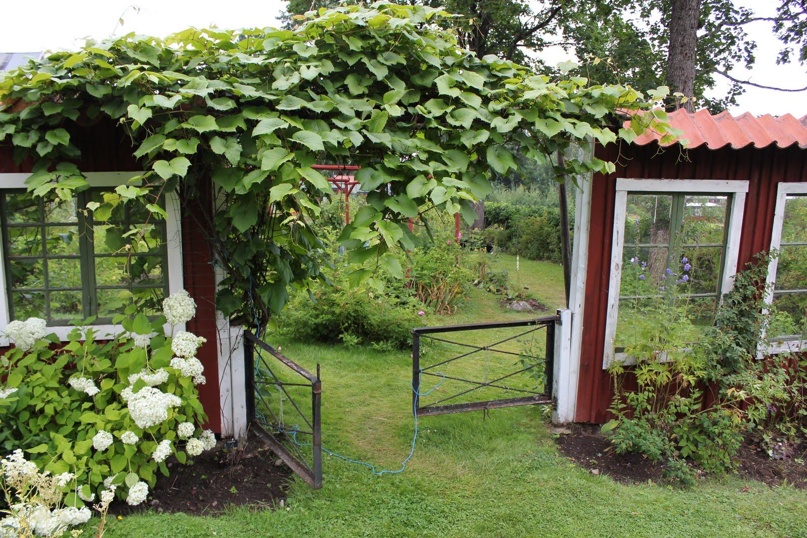 Trädgård plank trädgård : Huset pÃ¥ landet: juli 2011