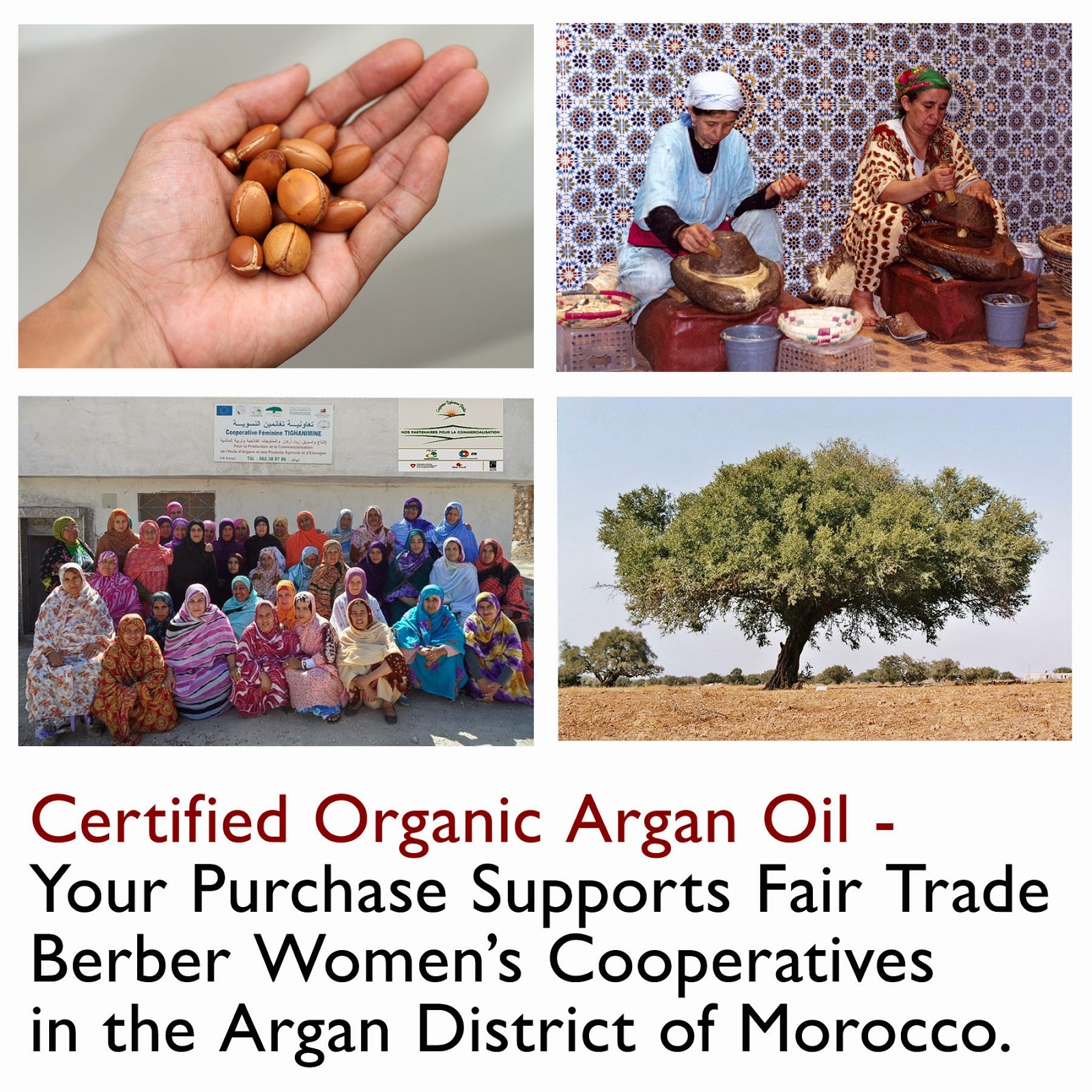 http://www.amazon.com/best-morocco-argan-hair-treatment/dp/b00gxbev0a/ref=sr_1_57?ie=utf8&qid=1399741825&sr=8-57&keywords=argan+oil+for+hair