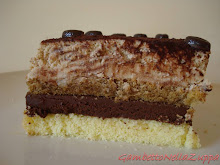 Torta tiramis al cioccolato