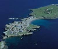 Excursión en bus desde Valencia a la Isla de Tabarca y El Palmeral de Elche, con Tuserco Hoteles