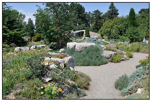 Growing with plants: The Alpine Rock Garden at the Denver Botanic ...