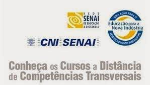 Cursos gratuitos SENAI à distancia SP 2014