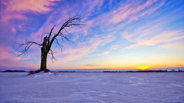 Free Download Winter Sunset HD Wallpapers for iPhone 5