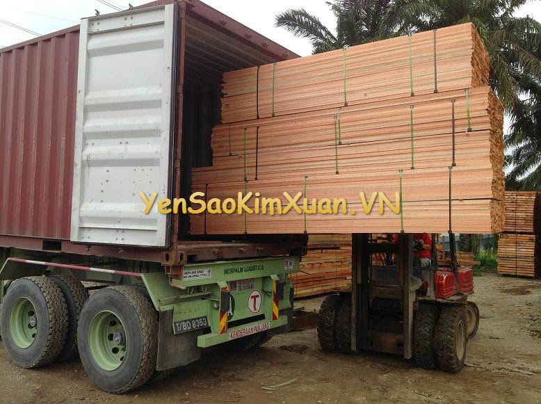 gỗ đỏ meranti