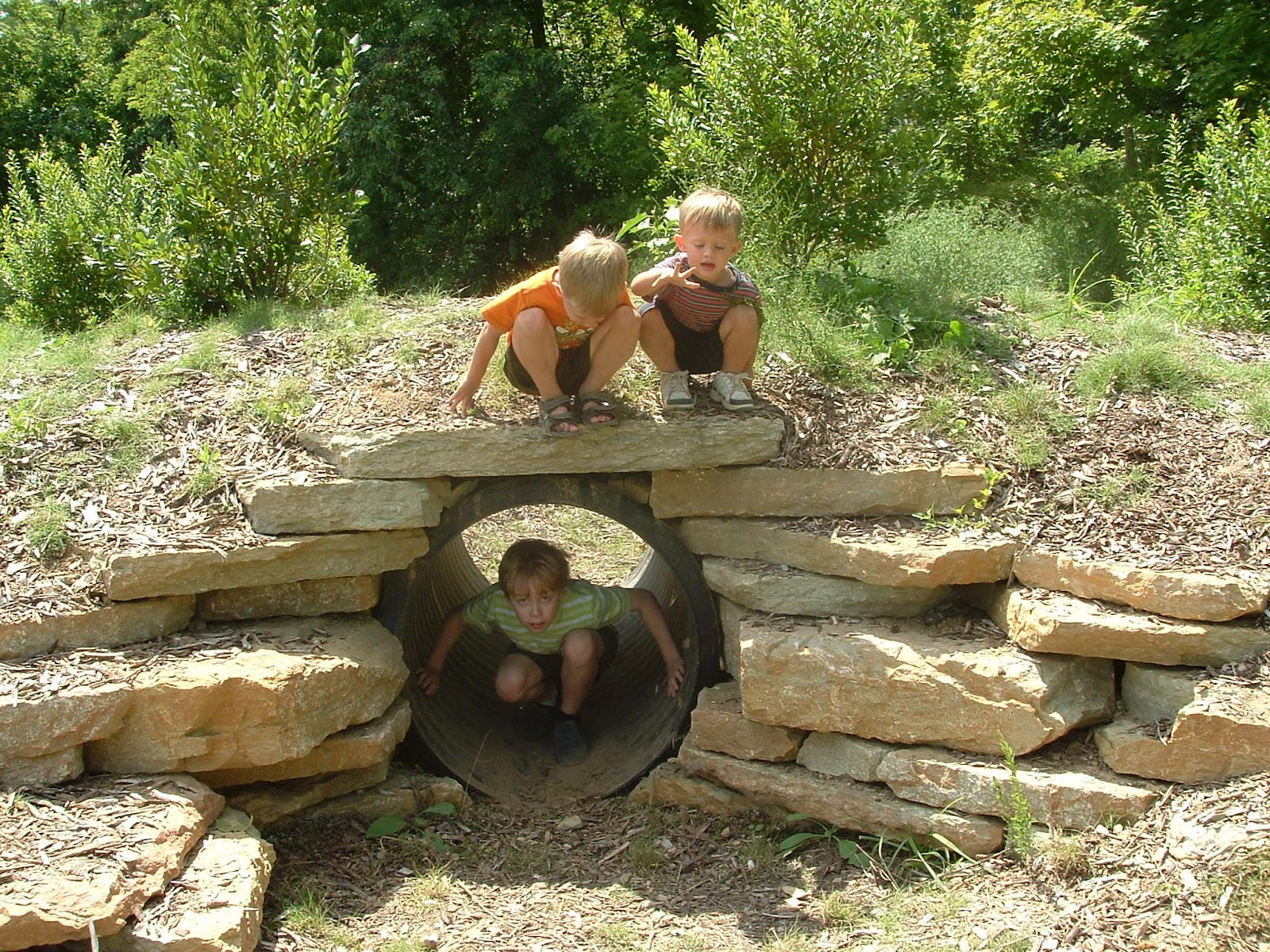 Two Tykes on a Hike: 2011