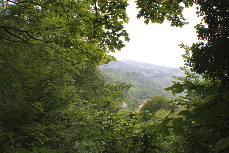 javi-lara-relato-niebla-covadonga