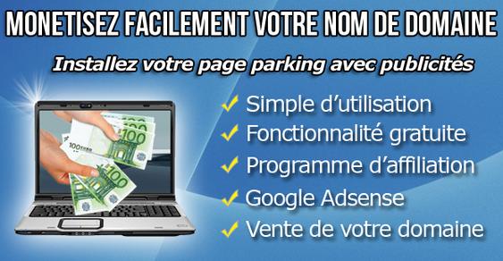 الربح من (page parking ) الدومين