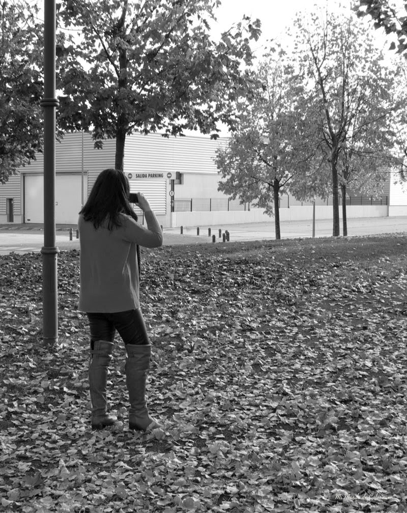 foto Otoño blanco y negro