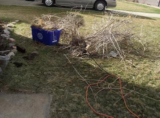 Gardening: My Labor of Love