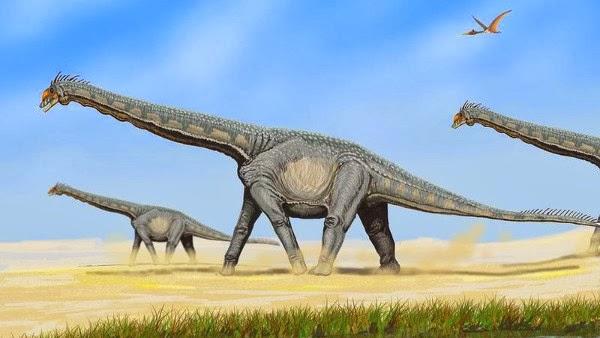 Dinosaurus Sauropoda, Yongjinglong Datangi