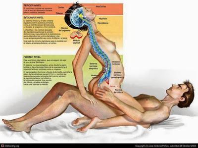 Top 10 Beneficios do Sexo