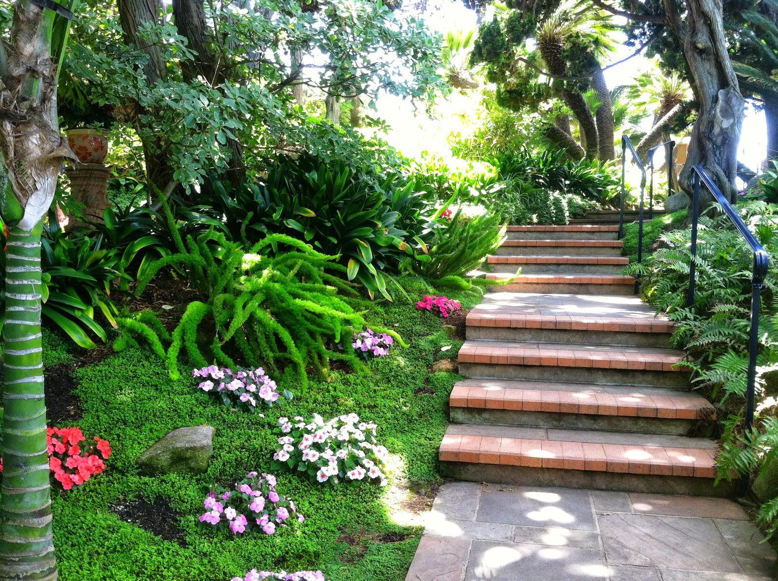 Stairway Into Meditation Garden